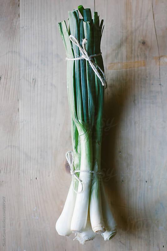 Onion by Giada Canu for Stocksy United