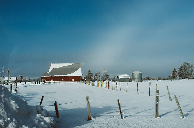 Farmland in winter by Dylan M Howell Photography for Stocksy United