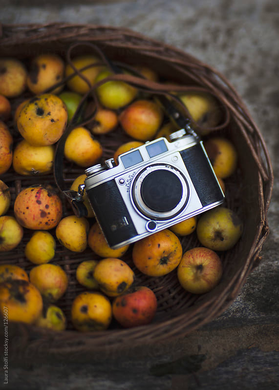 Retro camera in organic apple basket seen from above by Laura Stolfi for Stocksy United