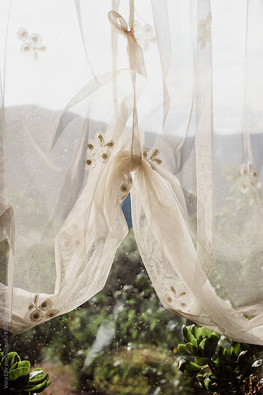 White tulle with design on rainy window by Vera Lair for Stocksy United