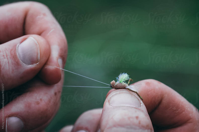 closeup of fly fisherman hands tying a fly by Micky Wiswedel for Stocksy United