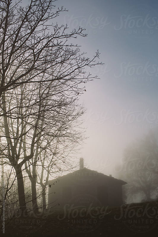 Country house in the morning mist by michela ravasio for Stocksy United