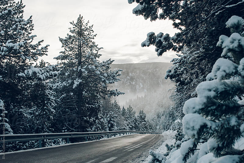 Winter road to the mountain by Jordi Rulló for Stocksy United