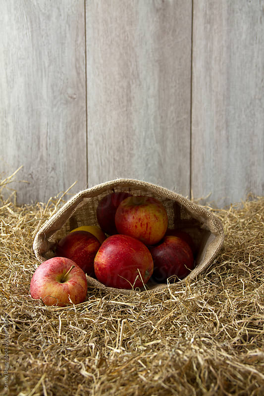 Apples in sack on hay by Kirsty Begg for Stocksy United