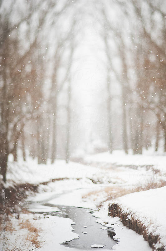 Snowy stream by Melanie DeFazio for Stocksy United
