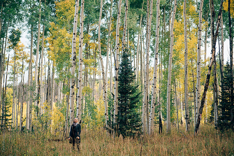 blonde woman looks so small next to the trees in an aspen grove by Tara Romasanta for Stocksy United