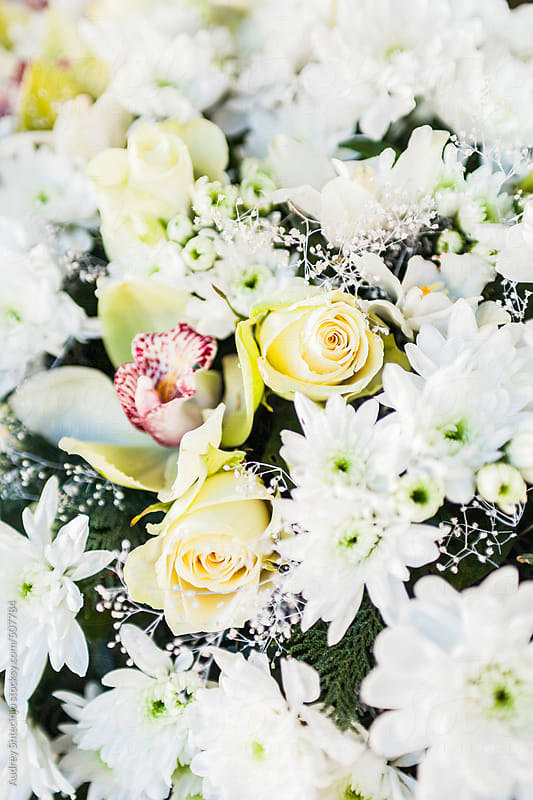 White bouquet wiht roses, orhcid and various flowers. by Audrey Shtecinjo for Stocksy United