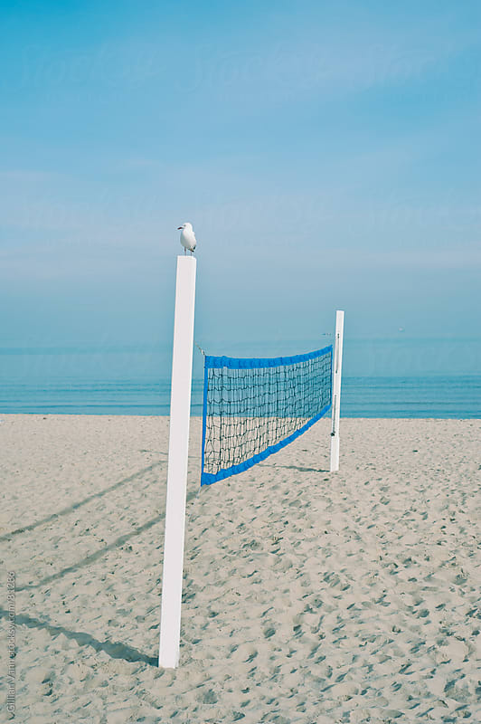 beach volleyball net by Gillian Vann for Stocksy United
