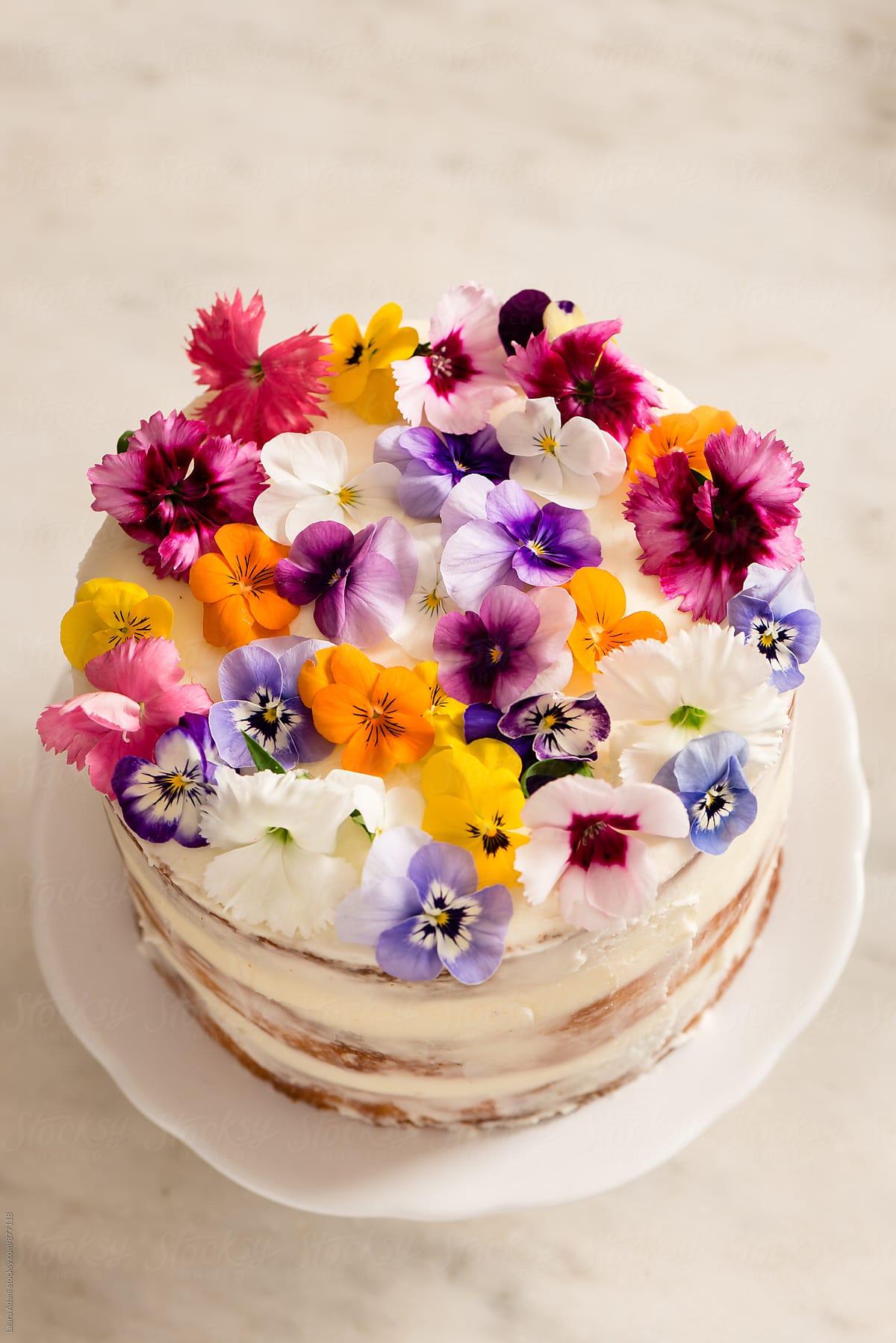 torta so sirôtkami