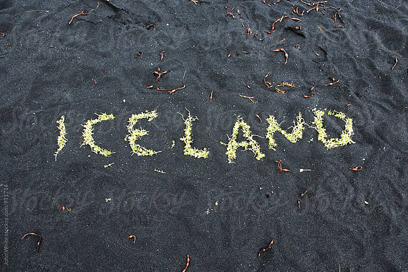 Iceland written in flowers. by John White for Stocksy United