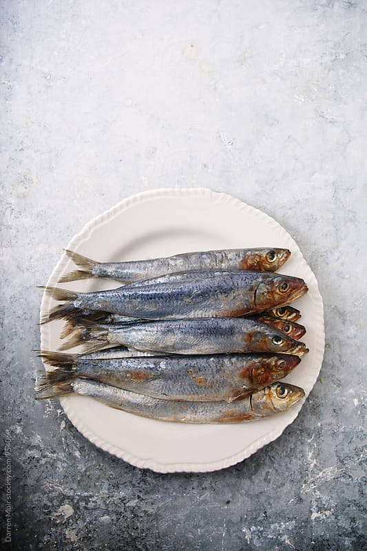 Fresh fish on a plate. by Darren Muir for Stocksy United