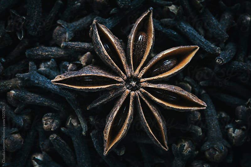 Christmas Spices, A single Star Anise on a Bed of Cloves by Claudia Lommel for Stocksy United