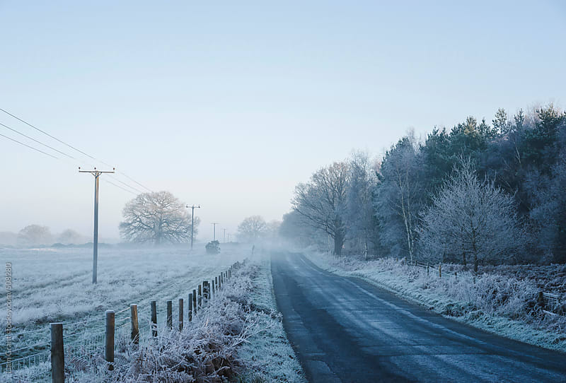 Icy rural road through mist.  by Liam Grant for Stocksy United
