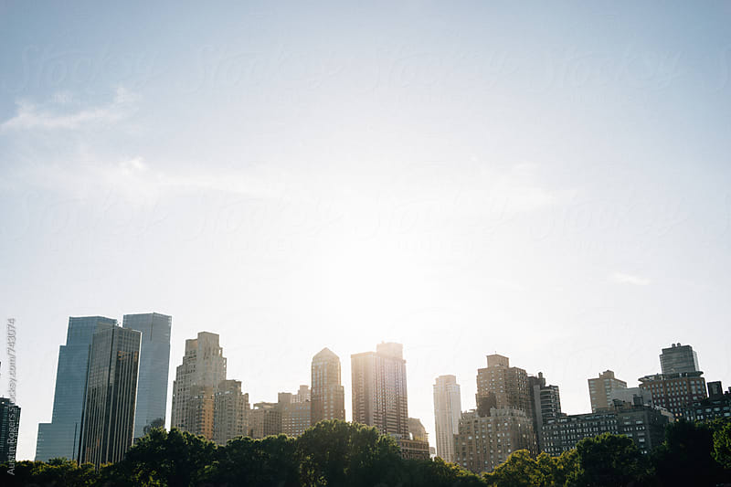 Skyline from Central Park at Sunset by Austin Rogers for Stocksy United