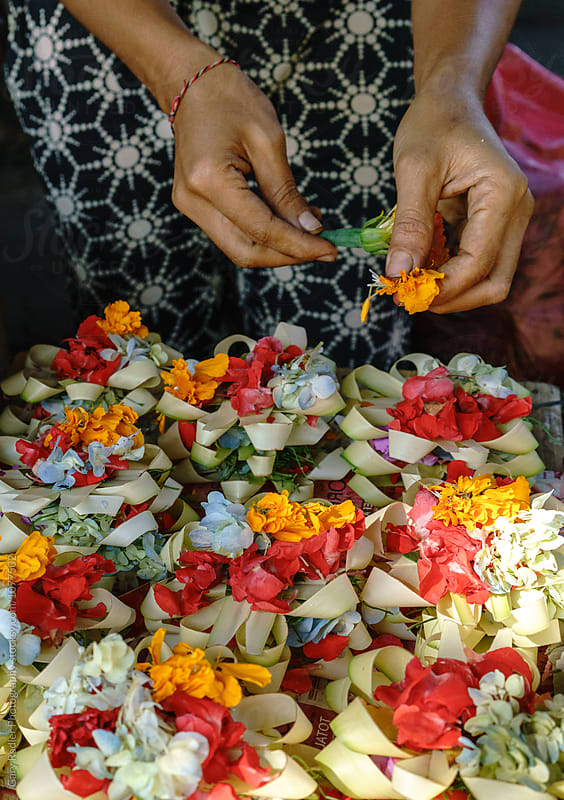 Hands of a Bali Woman Making Floral Hindu Ceremonial Artifact by Gary Radler Photography for Stocksy United