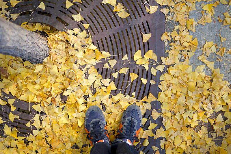 Looking down at my toes and some fall leaves. by Lucas Saugen for Stocksy United