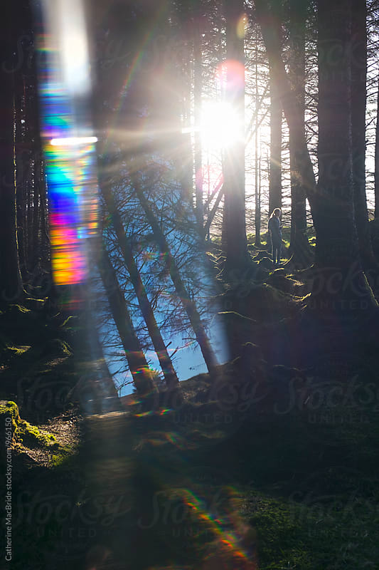 Portrait of a teenage boy in a forest through a glass prism by Catherine MacBride for Stocksy United
