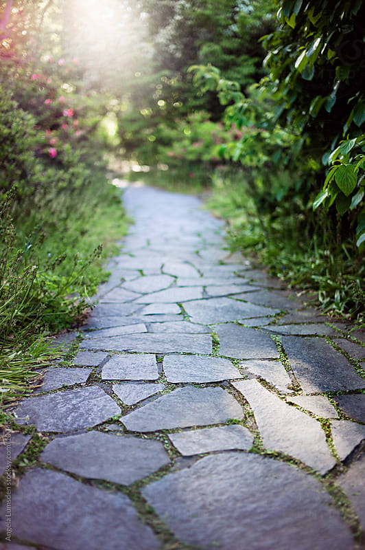 Slate paved pathway through a pretty garden bathed in evening light by Angela Lumsden for Stocksy United