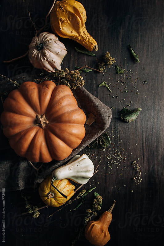 Pumpkins on a wooden table by Nataša Mandić for Stocksy United