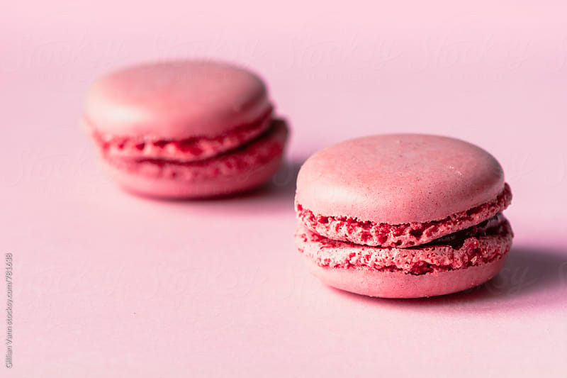 macaron sweet biscuit, pink on pink by Gillian Vann for Stocksy United