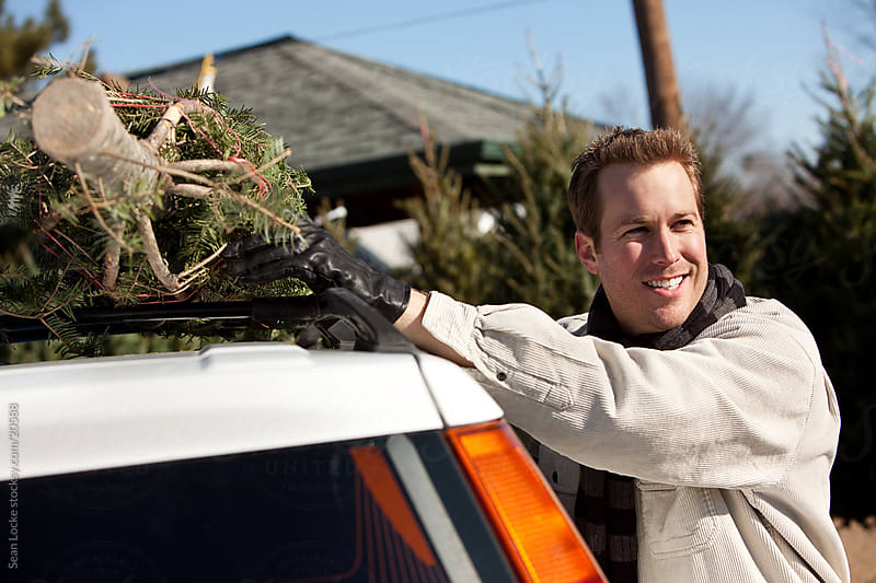Tree Lot: Man Taking Christmas Tree Home by Sean Locke for Stocksy United