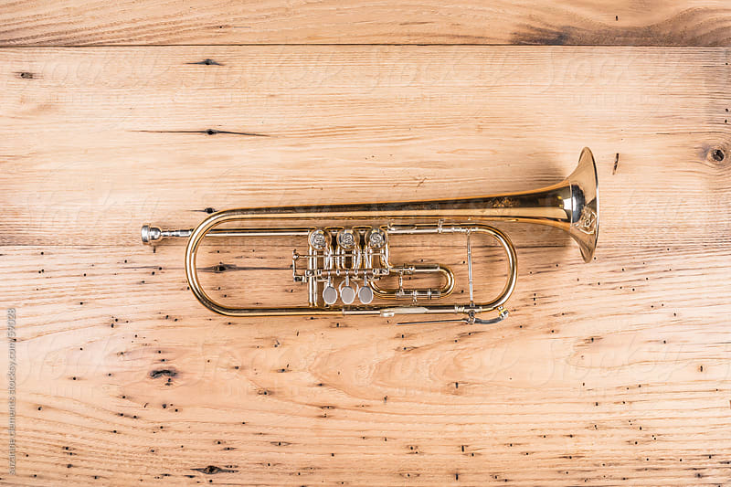 Vintage Trumpet Musical Horn by suzanne clements for Stocksy United