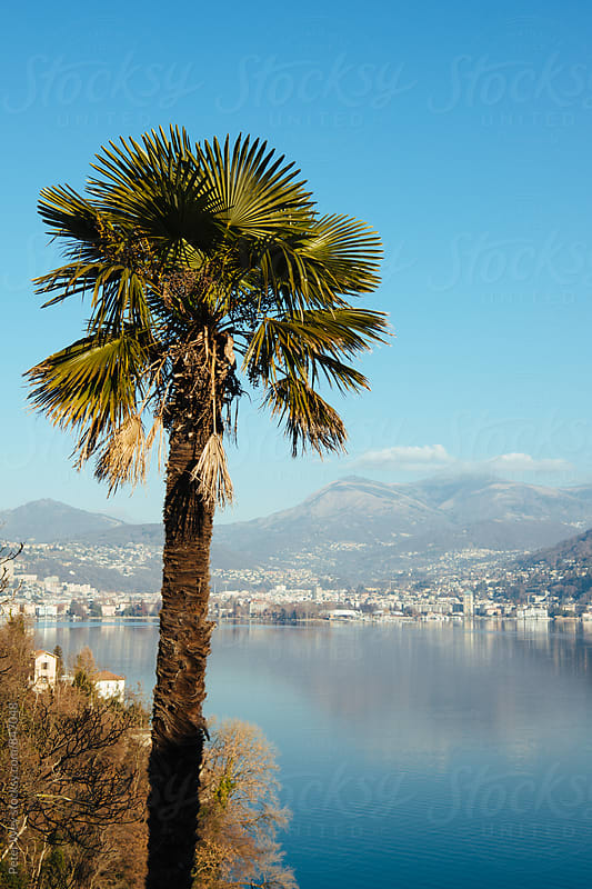 Lake of Lugano  by Peter Wey for Stocksy United