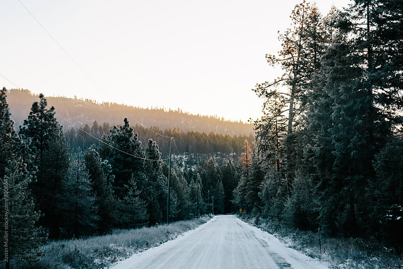 Frost covered dirt road during sunrise by Justin Mullet for Stocksy United