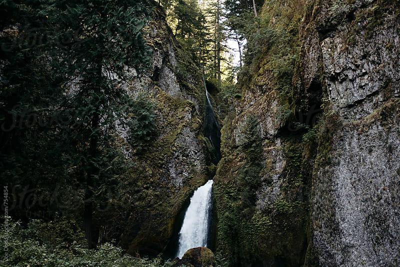 Wachlella Falls by Joe Dodd for Stocksy United