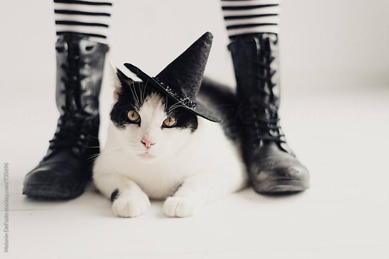 Kitty witch by Melanie DeFazio for Stocksy United