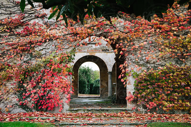 a red vine-covered series of arches at a villa in italy by Sarah Lalone for Stocksy United