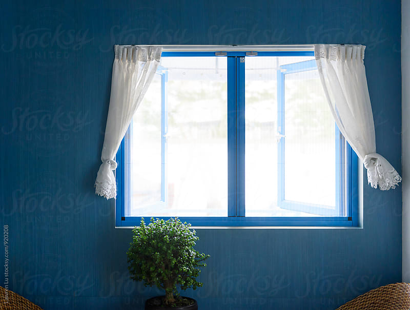 View on blue wall with window and potted plant by Lawren Lu for Stocksy United