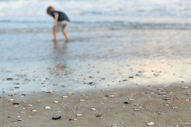 boy hunting for shells at the beach by Kelly Knox for Stocksy United