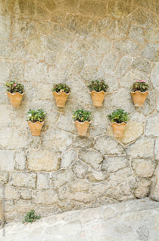 Pots on a wall by Javier Marquez for Stocksy United