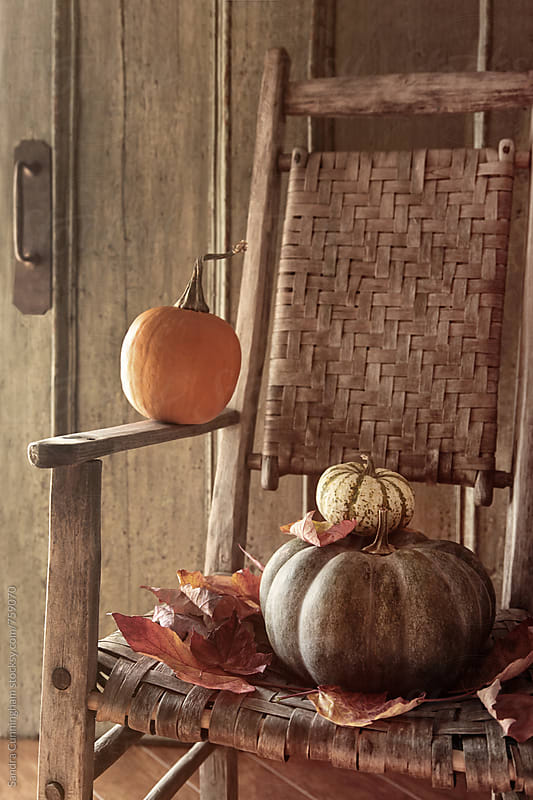 Pumpkins on old chair with leaves by Sandra Cunningham for Stocksy United