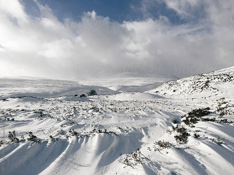 Beautiful Scottish winter landscape by Neil Warburton for Stocksy United