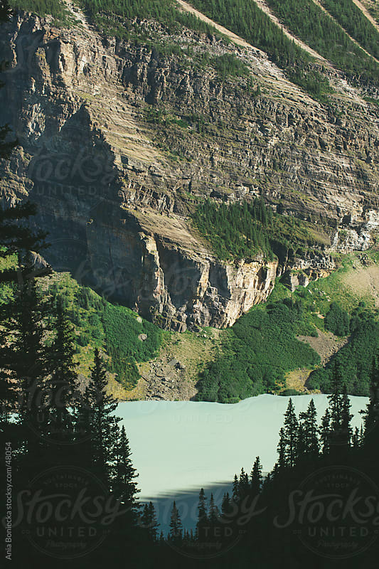 Forest at Lake Louise in Alberta, Canada by Ania Boniecka for Stocksy United