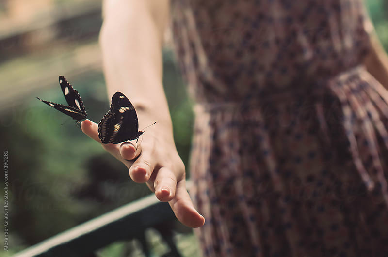 Butterflys Sitting On Woman's Hand by Alexander Grabchilev for Stocksy United