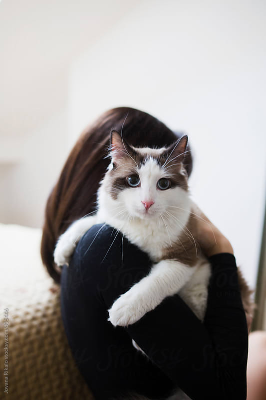 Young woman holding a cat by Jovana Rikalo for Stocksy United