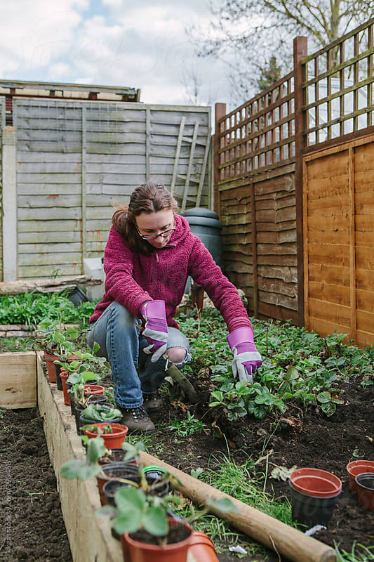Woman working in her vegetable garden. by kkgas for Stocksy United