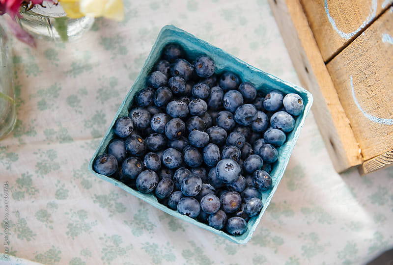 Quart of fresh organic blueberries by Cara Dolan for Stocksy United
