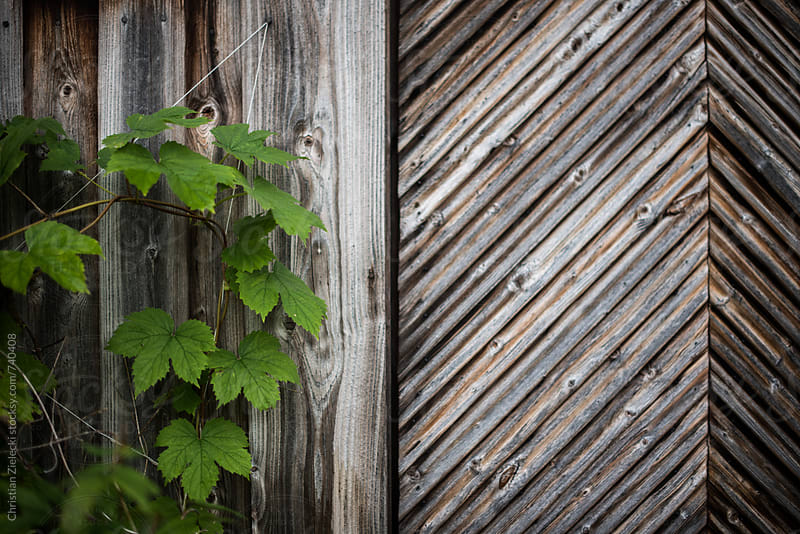 a wooden door with pattern at an old house by Christian Zielecki for Stocksy United