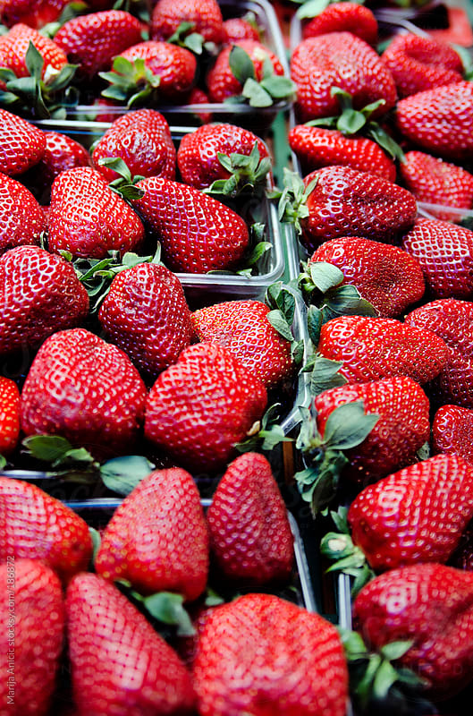 Strawberries on the market by Marija Anicic for Stocksy United