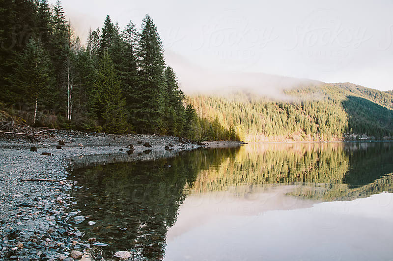 Quiet shoreline of a mountain lake.  by Justin Mullet for Stocksy United