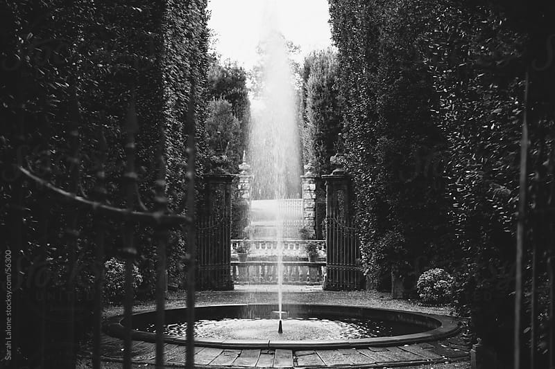 Fountain in a garden at Villa Reale in Tuscany, Italy by Sarah Lalone for Stocksy United