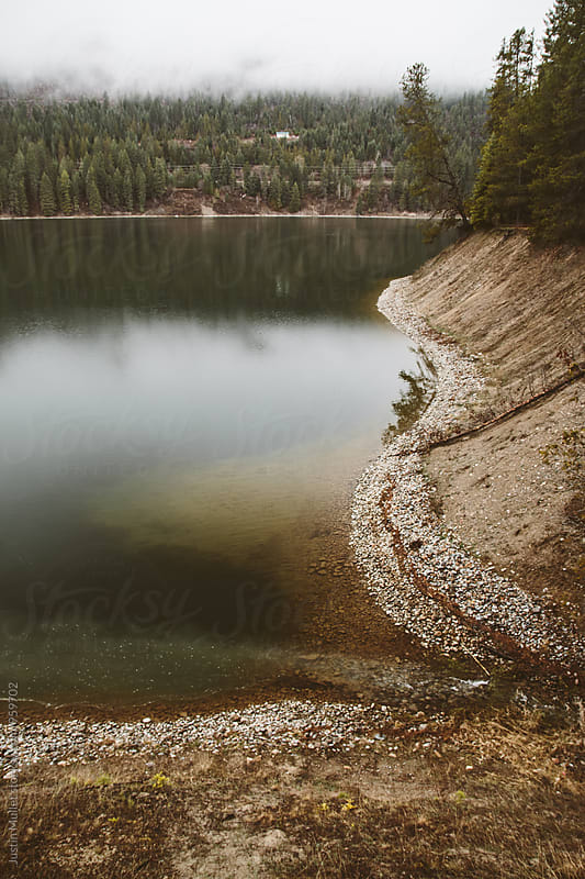 Pend Oreille River bank on a foggy morning.  by Justin Mullet for Stocksy United
