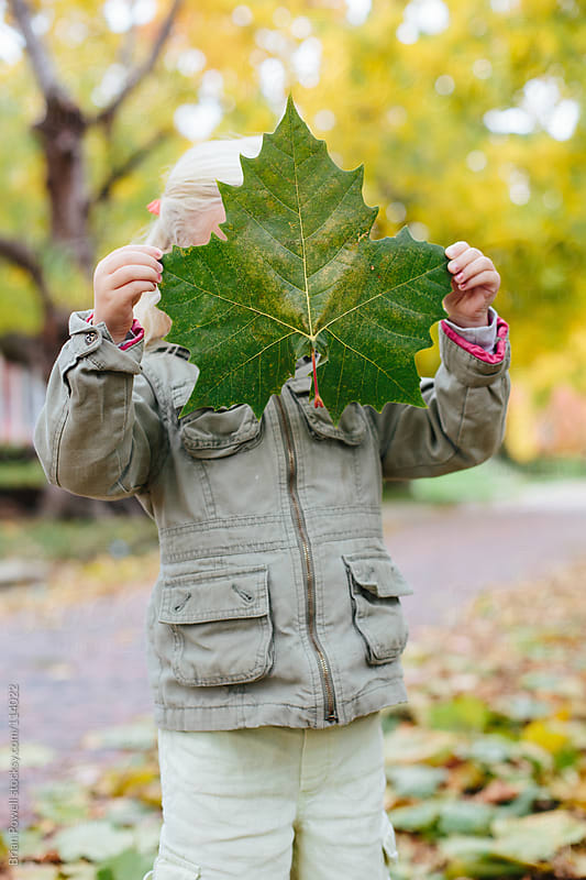 girl with huge leaf in Fall  by Brian Powell for Stocksy United