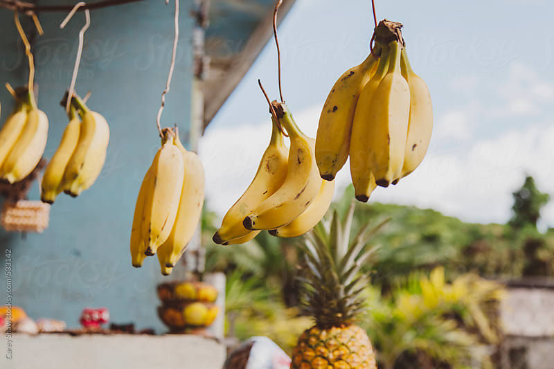 Colorful fruit at outdoor market by Carey Shaw for Stocksy United