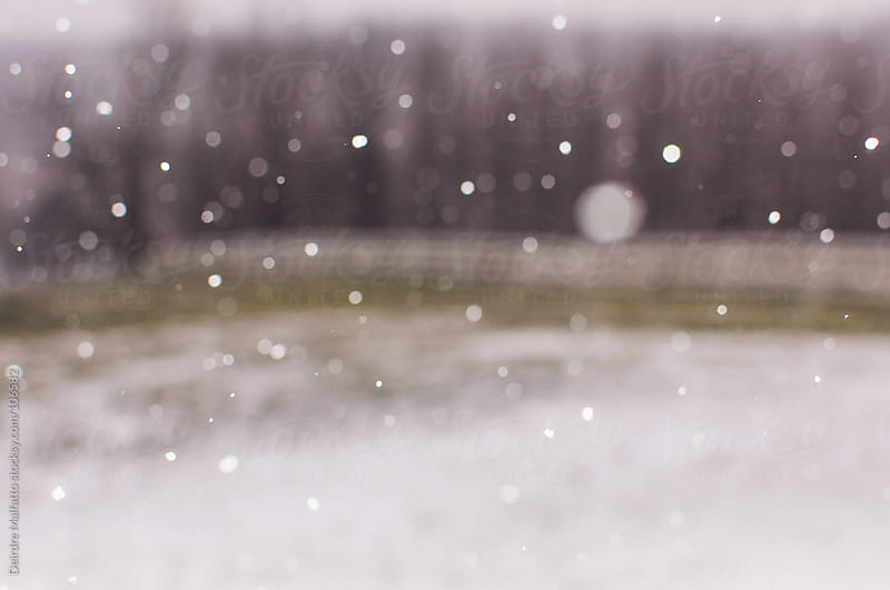a blurred field with falling flakes of snow by Deirdre Malfatto for Stocksy United