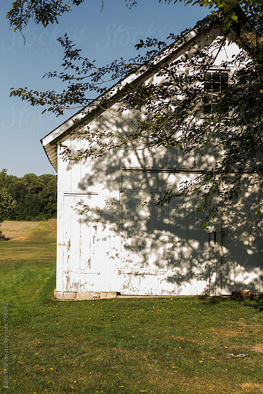 Backside of a barn on a sunny day by Eddie Pearson for Stocksy United